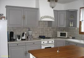 meuble lapeyre cuisine charniere meuble cuisine lapeyre inspirant frigo encastrable but
