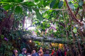 Us Botanic Garden Branches Of Government Tour The Leafy Prickly Oasis Of The U S