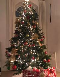 where can i find a brown christmas tree and a rod decorate christmas tree with kids