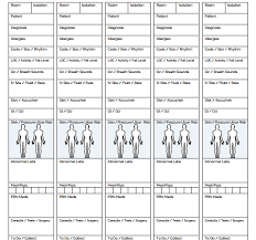 Patient Information Sheet Template The Nursing Brain Sheet Database 33 Report Sheet