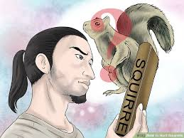 How To Hunt Squirrels In Your Backyard by How To Hunt Squirrels With Pictures Wikihow