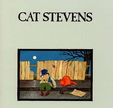 cat photo album cat biography albums links allmusic