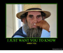 Shwing Meme - a schwing and amish amish meme on me me