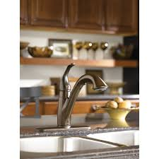 Moen Chateau Kitchen Faucet by Moen 7545 Camerist 1 Handle Kitchen Faucet With Pullout Spout