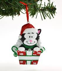 black cat in box personalized ornaments