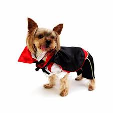 funny dog costumes halloween compare prices on vampire dog costume online shopping buy low