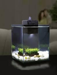 amazon com fluval chi aquarium kit 5 gallon aquarium filter