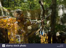 Bow Ground Blind A Woman Bow Hunter With Camouflage Mask Hunting White Tail Deer