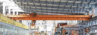 professional overhead crane manufacturers from china dgcrane