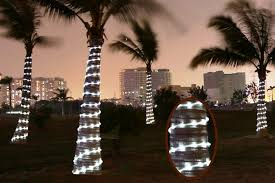 best outdoor solar powered rope lights top 3 reviews