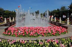 flower places cool places to see flowers da lat flower festival