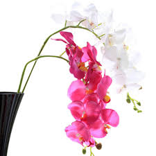 compare prices on orchid silk flowers online shopping buy low