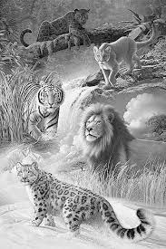 the 25 best animal pencil drawings ideas on pinterest pencil