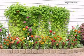 organized clutter yard of flowers 2015 garden tour