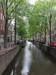 canap駸 chez but 荷蘭 阿姆斯特丹 舊世界的頑皮城市 chez elsa travel