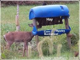 Box Blinds For Deer Hunting 25 Unique Deer Blind Plans Ideas On Pinterest Deer Box Stands