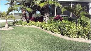 Backyard Easy Landscaping Ideas Low Maintenance Yard Plants On Prepossessing Landscaping Ideas For
