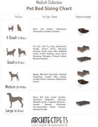 australian shepherd size chart architect pets pet bed sizing chart architect pets pinterest