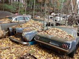 Vintage Ford Truck Salvage Yards - last call for parts at hillard u0027s auto salvage in michigan