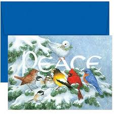 buy the best holiday greeting cards online