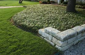 low maintenance drought friendly landscapes call for groundcovers