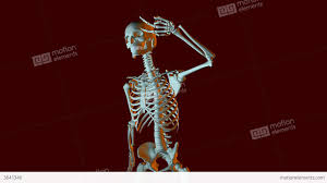 dancing halloween skeleton background dancing skeleton animation stock animation 3641346