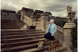 one of queen elizabeth u0027s beloved corgis has died vanity fair