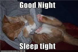 Goodnight Meme Cute - sleep tight memes image memes at relatably com