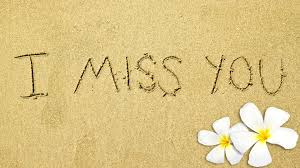 hd images of flowers miss you images hd