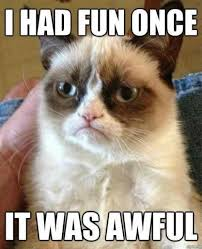 Anxiety Cat Meme - anxiety cat meme english cat best of the funny meme