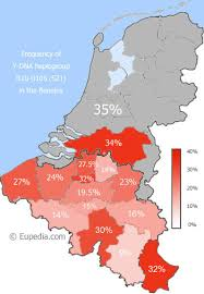 belgium language map breakdown of y dna distribution in belgium by province