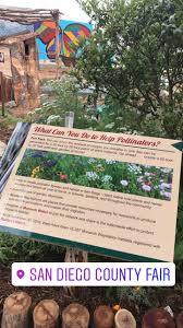 san diego county native plants visit the san diego county fair pollinator trail u2014 cnps san diego
