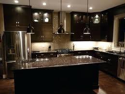 black kitchen cabinets ideas black kitchen cabinets design ideas narrg com