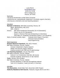 what to put on a resume resume template example