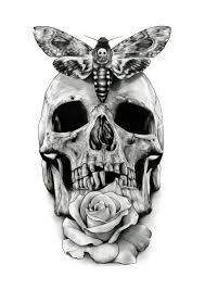 skull design drawing by aaronkingillustrator skull