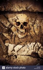 background for halloween human skull on ruins place horror background for halloween concept