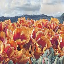 the tulips of abbotsford this painting was made from a simple