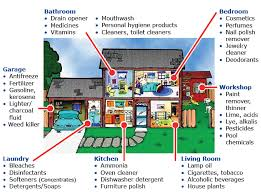In The Home Potential Household Poisons By Room Graphic Http Www Pharmacy