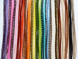 feathers for hair rainbow hair accessories strayhair