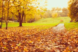quotes about beauty of fall autumn season
