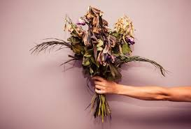 a flower you shouldn t i don t buy flowers and you shouldn t either thrillist