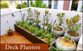 backyard landscape design stunning backyard landscaping ideas