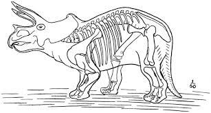 project gutenberg ebook dinosaurs william diller matthew