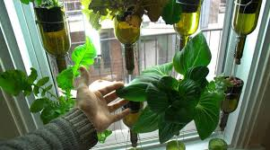 vertical hydroponic window garden from biocity news ecohome