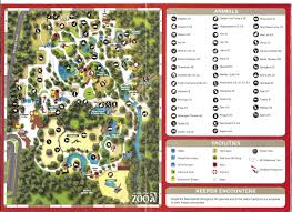 Bluebird Map Auckland Zoo Map 2002 Zoochat