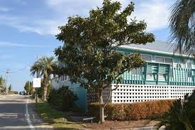 east of eden pawleys island haven houses for rent in pawleys