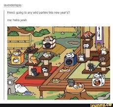 Meme Neko - what are your favorite neko atsume memes quora