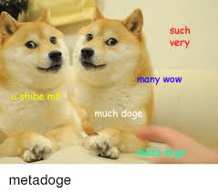 Much Doge Meme - such very many wow u shibe m8 much doge meta doge metadoge doge