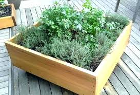 herb garden planter kitchen herb planter pots younited co