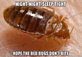 Bed Bug Meme - night night sleep tight hope the bed bugs don t bite make a meme